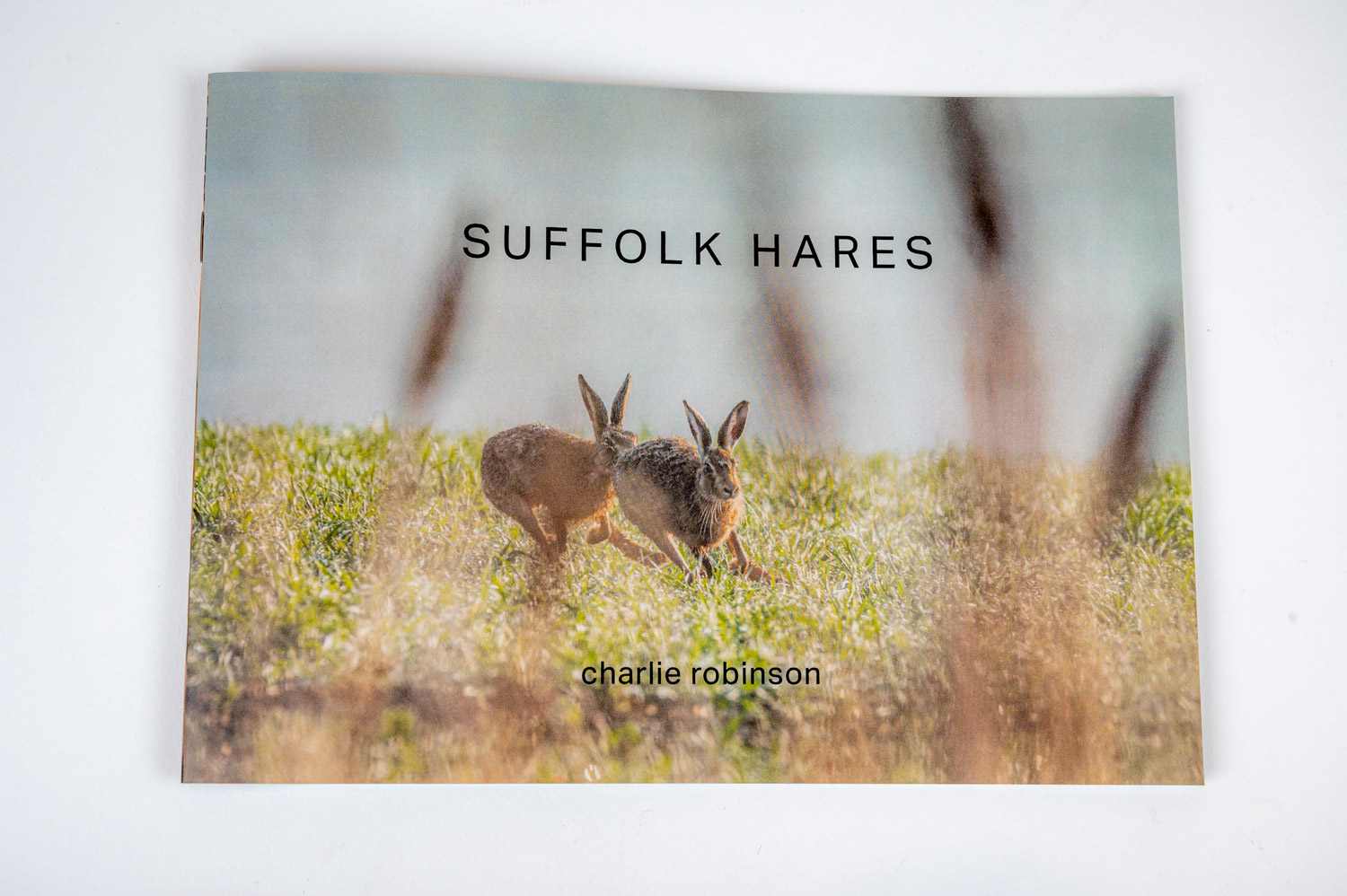 Suffolk Hares Zine | Front_Cover-5377.jpg